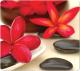Коврик для мыши Fellowes Earth Serie FS-59046 (цветы и камни) -