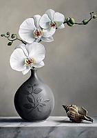 Набор алмазной вышивки Гранни Белая орхидея (Ag 4643) -
