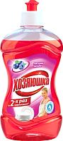 Средство для мытья посуды Хозяюшка Лесная ягода (500мл) -