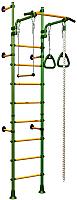 Детский спортивный комплекс Romana Комета Next 1 ДСКМ-2С-8.06.Г1.490.01-24 (зеленый/желтый) -