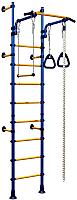 Детский спортивный комплекс Romana Комета Next 1 ДСКМ-2С-8.06.Г1.490.01-24 (синий/желтый) -