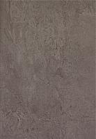 Плитка Tubadzin Amarena Grafit (250x360) -
