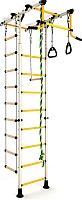 Детский спортивный комплекс Romana Комета 1 ДСКМ-2-8.00.Т.490.01-08 (белый антик/золото) -