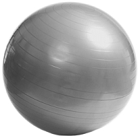 Фитбол гладкий Alex FT-AB GB-75 (серебристый) -