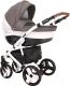 Детская универсальная коляска Coletto Florino Carbon 2 в 1 (05) -