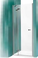 Душевая дверь Roltechnik Elegant Line GDNL1/100 (хром/прозрачное стекло) -
