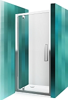 Душевая дверь Roltechnik Exclusive Line ECDO1/100 (сатин/прозрачное стекло) -