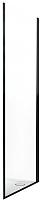 Душевая стенка Roltechnik Exclusive Line ECDBN/100 (черный/прозрачное стекло) -