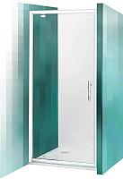 Душевая дверь Roltechnik Proxima Line PXDO1N/100 (хром/прозрачное стекло) -
