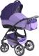 Детская универсальная коляска Expander Eliza (86) -