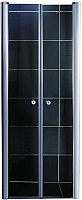 Душевая дверь Coliseum 7016 190х90 (прозрачное стекло) -