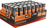 Батарейки АА Canyon ALKAA40 (40шт) -