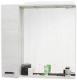 Зеркало для ванной Sanflor Торонто 75 L / Tor.02.75 (венге/северное дерево светлое) -