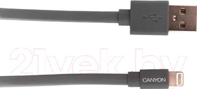 Кабель USB Canyon CNS-MFIC2DG