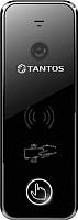 Вызывная панель Tantos iPanel 2WG (черный) -