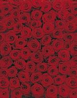 Фотообои Komar Roses 4-077 (194x270) -