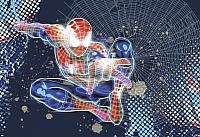 Фотообои Komar Spider-Man Neon 1-426 (184x127) -