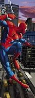 Фотообои Komar Spiderman NYC 1-437 (73x202) -