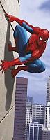 Фотообои Komar Spiderman 90 degree 1-442 (73x202) -
