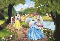 Фотообои Komar Princess Royal Gala 1-454 (184x127) -