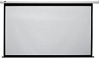 Проекционный экран Classic Solution Lyra 249x250 (LYRA_1_249) -