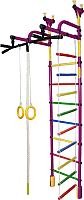 Детский спортивный комплекс Формула здоровья Жирафик-3А Плюс (фиолетовый/радуга) -