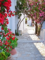 Фотообои GreenBerry Улочка в Греции 055 (206x270) -