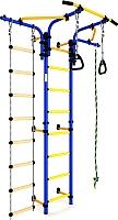 Детский спортивный комплекс Romana S5 ДСКМ-2С-8.06.Т1.410.01-14 (синий/желтый) -