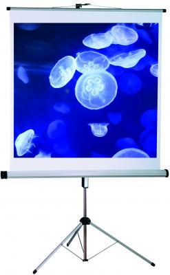 Проекционный экран Mechanische Weberei (MW) Combiflex Budget 150x150 - общий вид