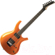 Электрогитара Parker Guitars PDF70TNG -