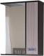 Шкаф с зеркалом для ванной Onika Гамма 58.01 (205828) -