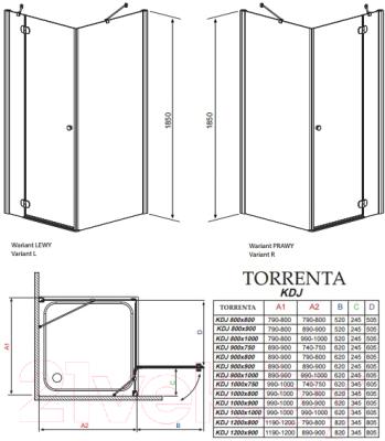 Душевое ограждение Radaway Torrenta KDJ 100 R (32444-01-01NR)