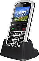 Мобильный телефон Ginzzu R12D (белый) -