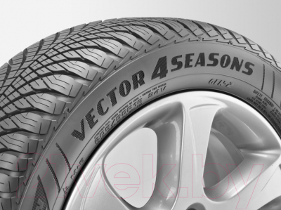 Всесезонная шина Goodyear Vector 4Seasons Gen-2 205/55R16 91H