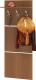 Вешалка для одежды Сокол-Мебель ВШ-5.1 (ноче экко) -