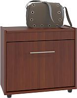 Тумба для обуви Сокол-Мебель ТП-6 (испанский орех) -