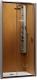 Душевая дверь Radaway Premium Plus DWJ (33313-01-06N) -