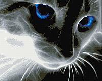 Набор алмазной вышивки Picasso Взгляд синих глаз (PD4050039) -