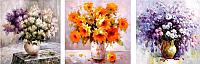 Картина по номерам Menglei Цветочное настроение (MT3070) -