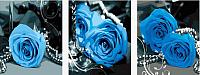 Картина по номерам Menglei Голубые розы (MT3073) -