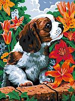 Картина по номерам Picasso Чудесный аромат (PC3040001) -