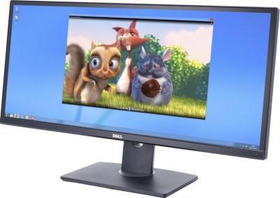 Монитор Dell U2913WM - общий вид
