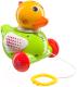 Развивающая игрушка Happy Baby Ducky 331246 -