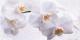 Декоративная плитка Нефрит-Керамика Панно Меланж (1000x500, голубой) -