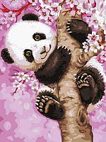 Картина по номерам Picasso Медвежонок панды (PC3040052) -