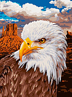 Картина по номерам Picasso Символ свободы (PC3040054) -