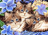 Картина по номерам Picasso Котята в цветах (PC3040059) -