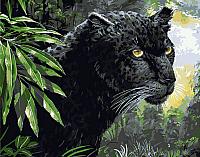 Картина по номерам Picasso Черная пантера (PC4050204) -