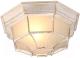 Светильник Arte Lamp Pegasus A3121PF-1WG -