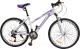 Велосипед Arena AR2601FS-L (17, фиолетовый/белый) -